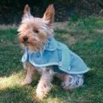 šaty pro psy