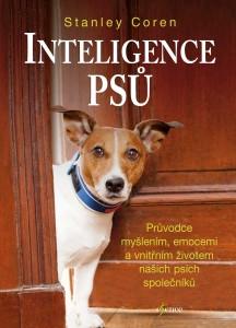 knhia inteligence psu